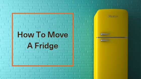 7 Best Tips On How To Move A Fridge