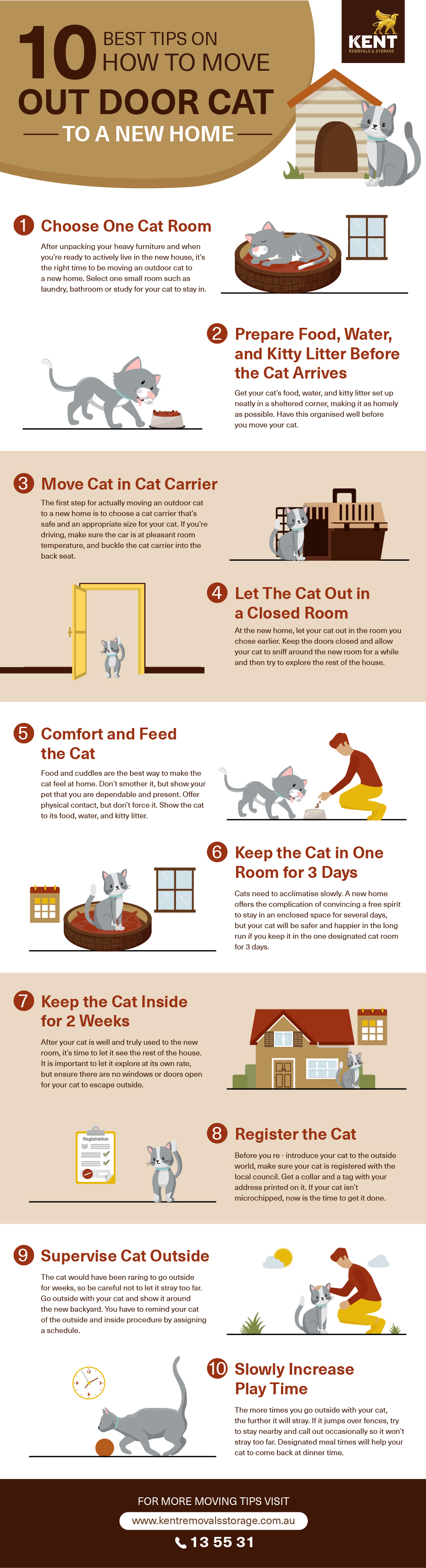 10 Best Tips on How To Move Outdoor Cat To New Home